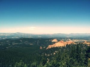 The view from tree line