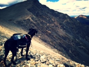 How does Lu feel about fourteeners?  Obvious.  She loves them.
