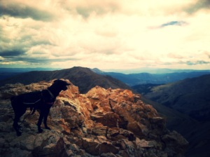 Lu on the summit of Belford, looking out over the Collegiate Wildnerness (like a boss)